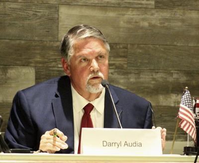 Sainato, Ryan, Audia vie for voter eyes in forum