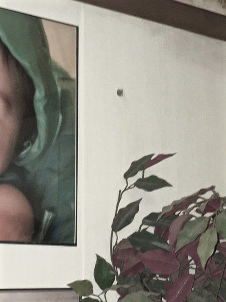 Couple, baby safe after home riddled with bullets