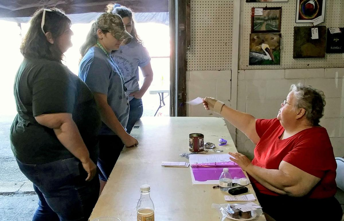 GALLERY: Judgment Day — County fair entries receive their