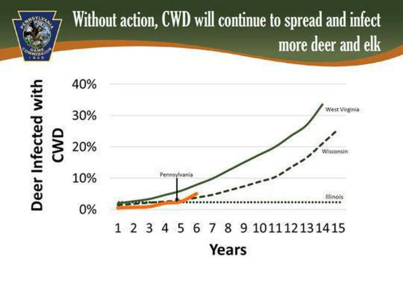 Five things every hunter needs to know about chronic wasting disease and our deer herd