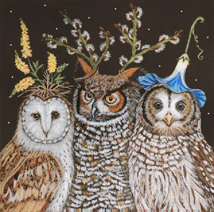 Outrageous Owls Senior Support Group