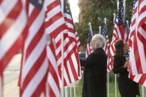 City hall flag display honors 'very special people' for Veterans Day