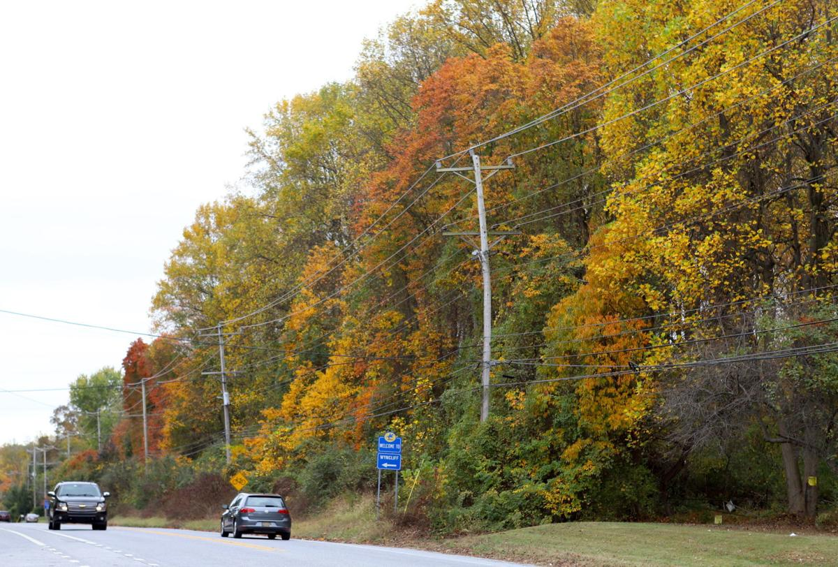 Paper Mill Road annexation