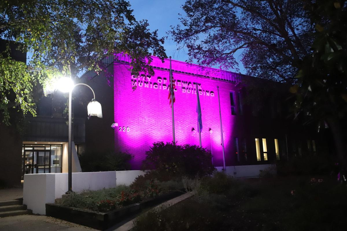 Newark's city hall lit in purple to raise awareness of domestic violence