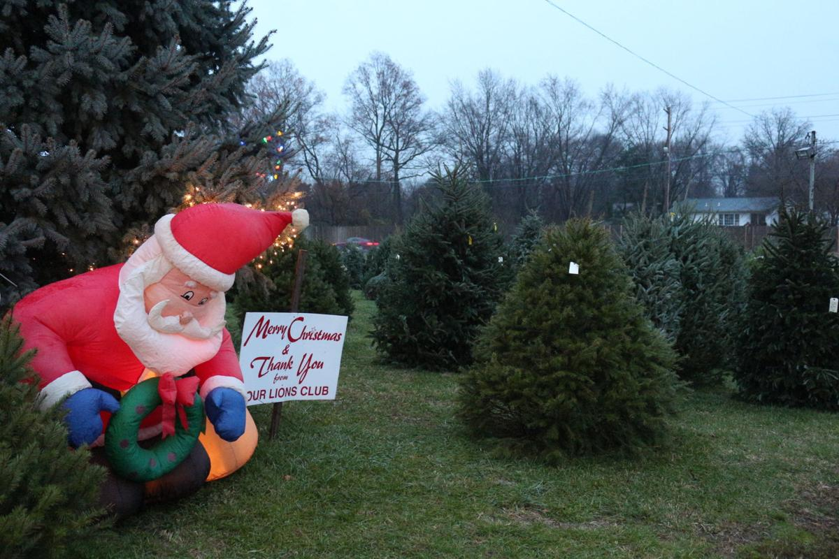 Brookside Lions Club Annual Tree Sale Hits Hard Times