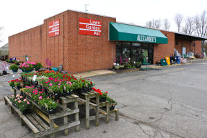 Medical marijuana growing facility, dispensary to open in Newark