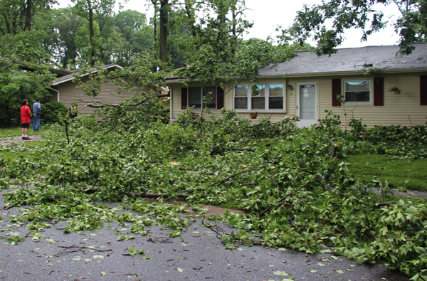Nws Confirms Tornado As Cleanup Continues In Robscott