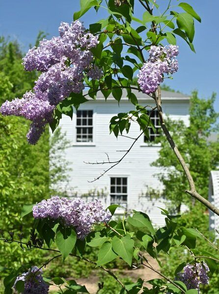 Museum of Old Newbury hosts 42nd annual Garden Tour