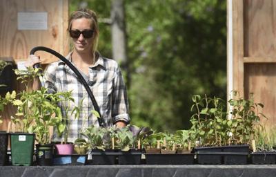 Nourishing the North Shore kicks off fundraiser