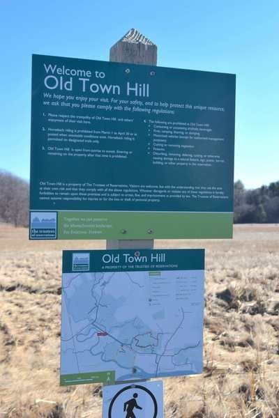 Invasive plants will be target of Old Town Hill work