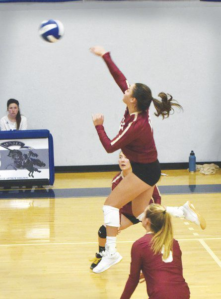 Daily News Girls Volleyball All-Stars 2019: Newburyport's Yim dominates once more