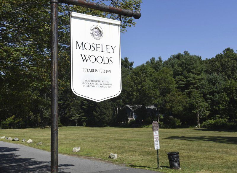 Moseley Park might be dogs' best friend