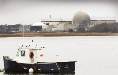 Nuclear plant operating with essential staff