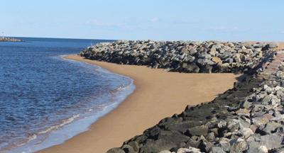 Sargent's view: A modest proposal for Plum Island