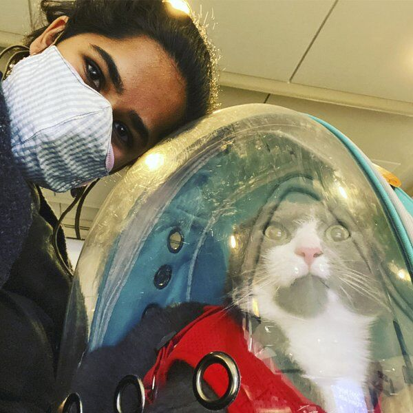 Changes, challenges: The not-so-secret life of pandemic pets