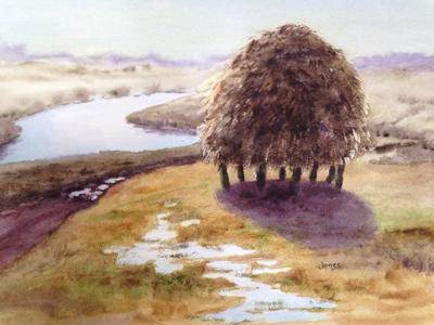 Watercolor exhibit coming to Anna Jaques