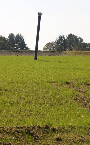 121005_NT_JVA_grass