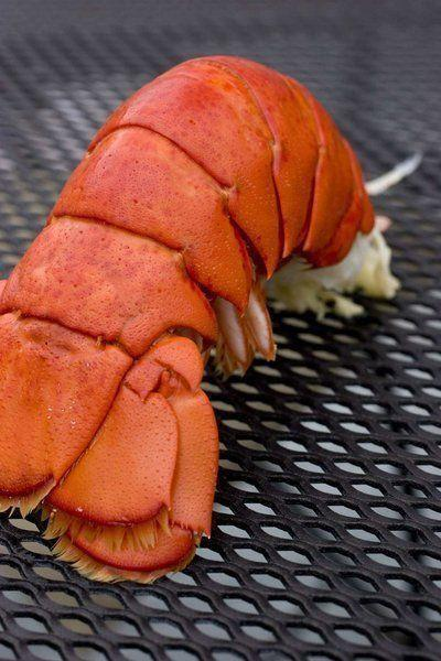 Lobster processing claws its way into law