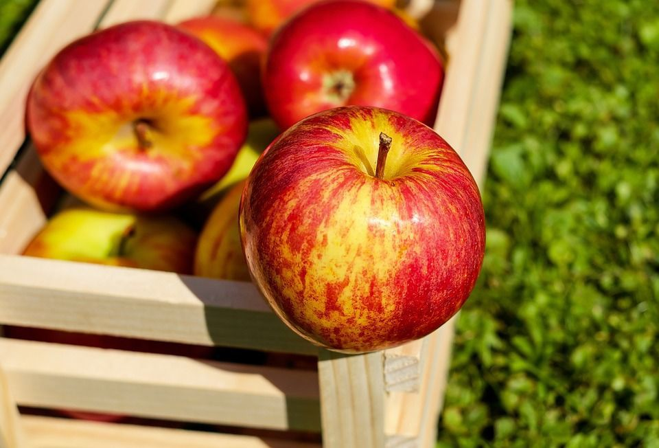 Fleming Castle will host free Apple Celebration on Saturday, Sept. 8