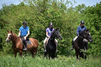 Trail Ride at Lord Stirling Stable