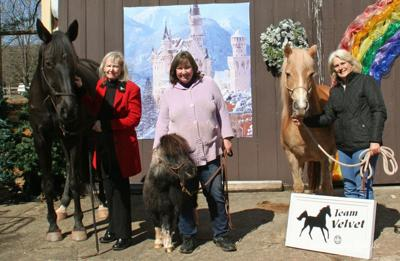 Team Velvet equine therapy welcomes new board members