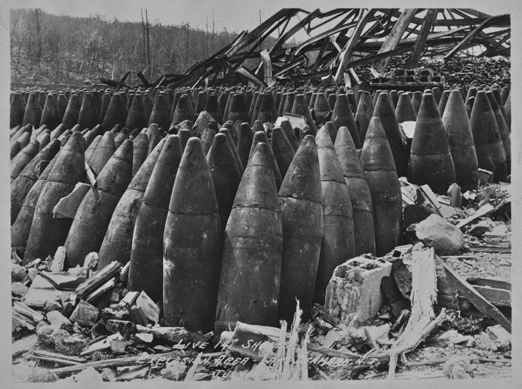 Unexploded shells at Lake Denmark