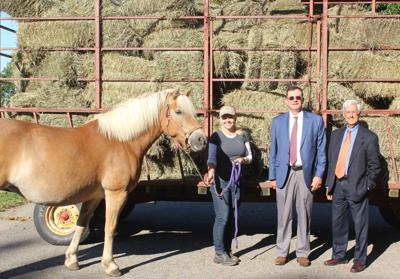 Gebhardt & Kiefer Law Offices donate 135 bales of hay to Riding with Heart in Pittstown
