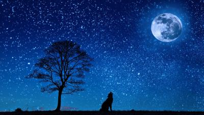 Tewksbury Parks to host Star Party at Christie Hoffman Farm Park on Friday, Oct. 22