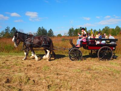 Raritan Headwaters' annual Old Fashioned Country Fair returns on Sunday, Oct. 13