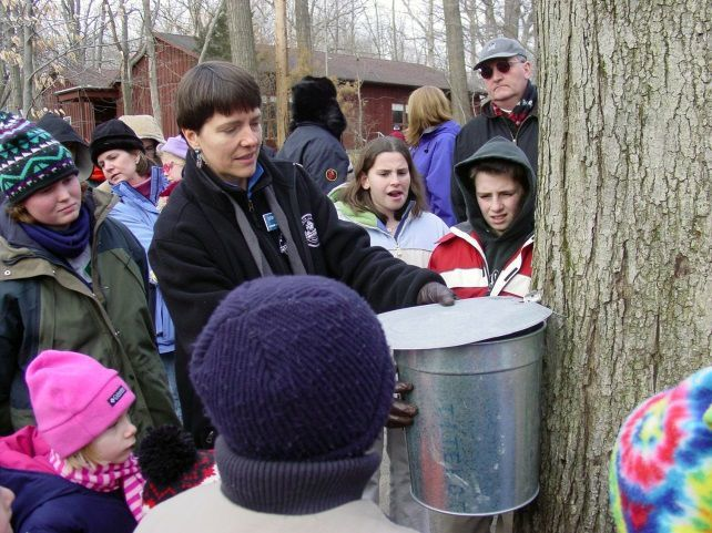 Tapping tree