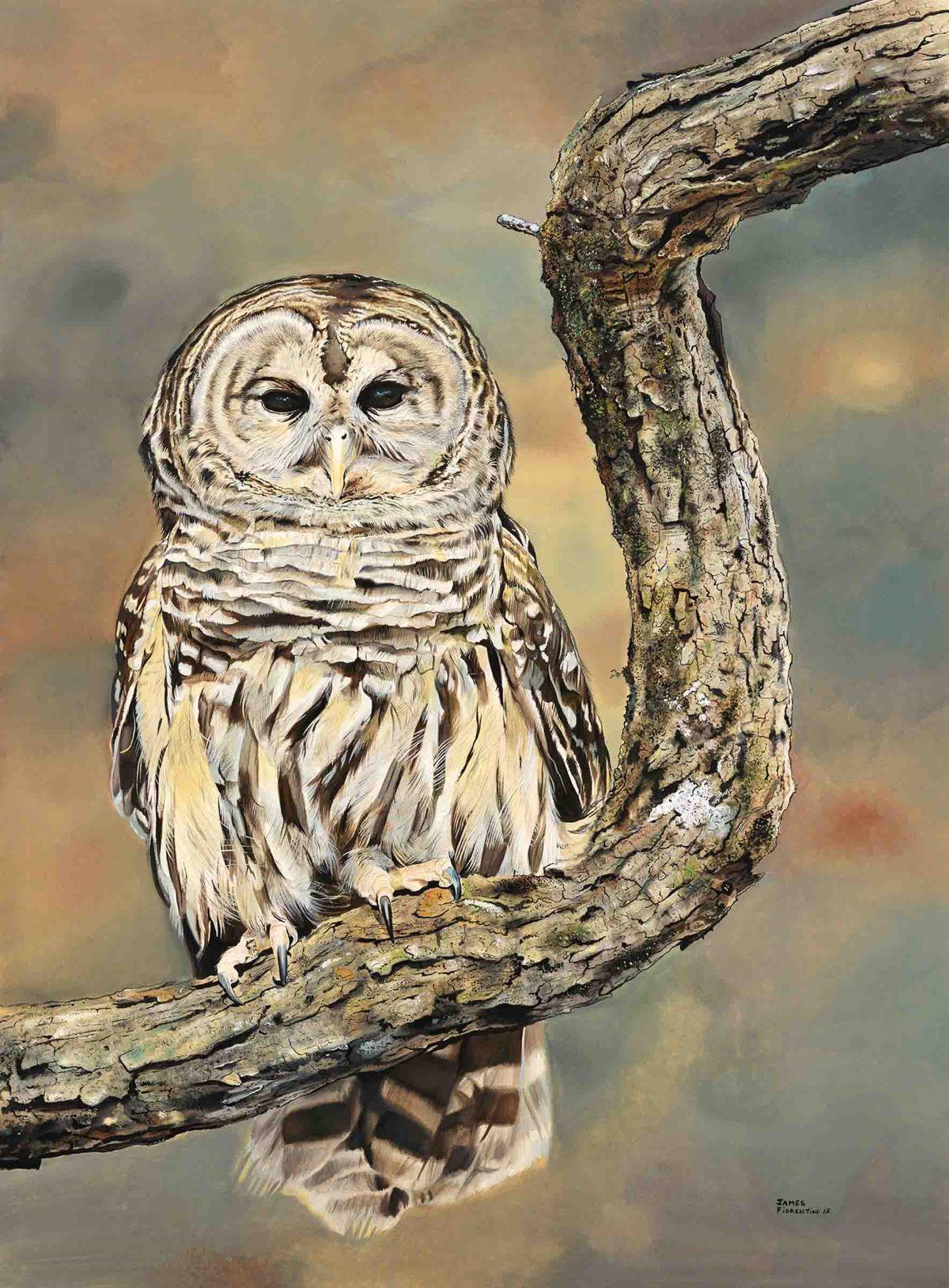 Hunterdon artist James Fiorentino places in New Jersey Highlands Coalition juried art exhibit