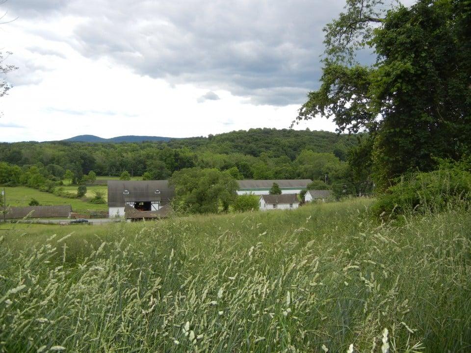 Hill & Dale Farm