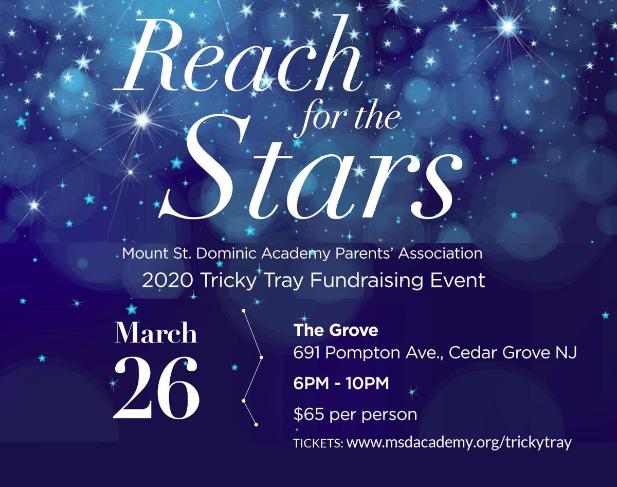 """Reach for the Stars"" Tricky Tray"