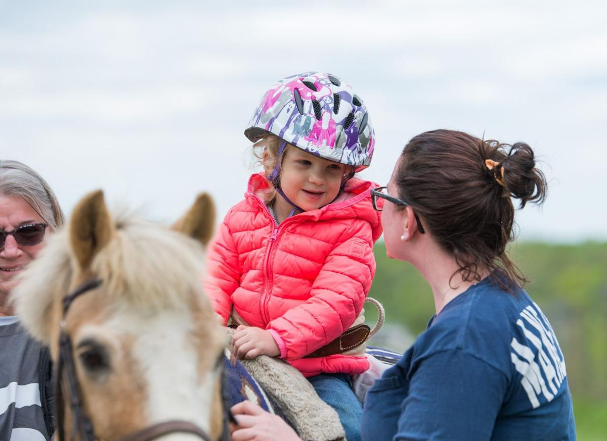 Mane Stream equine therapy program seeks items for fundraising tack sale