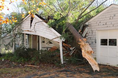 TREE HITS HOME