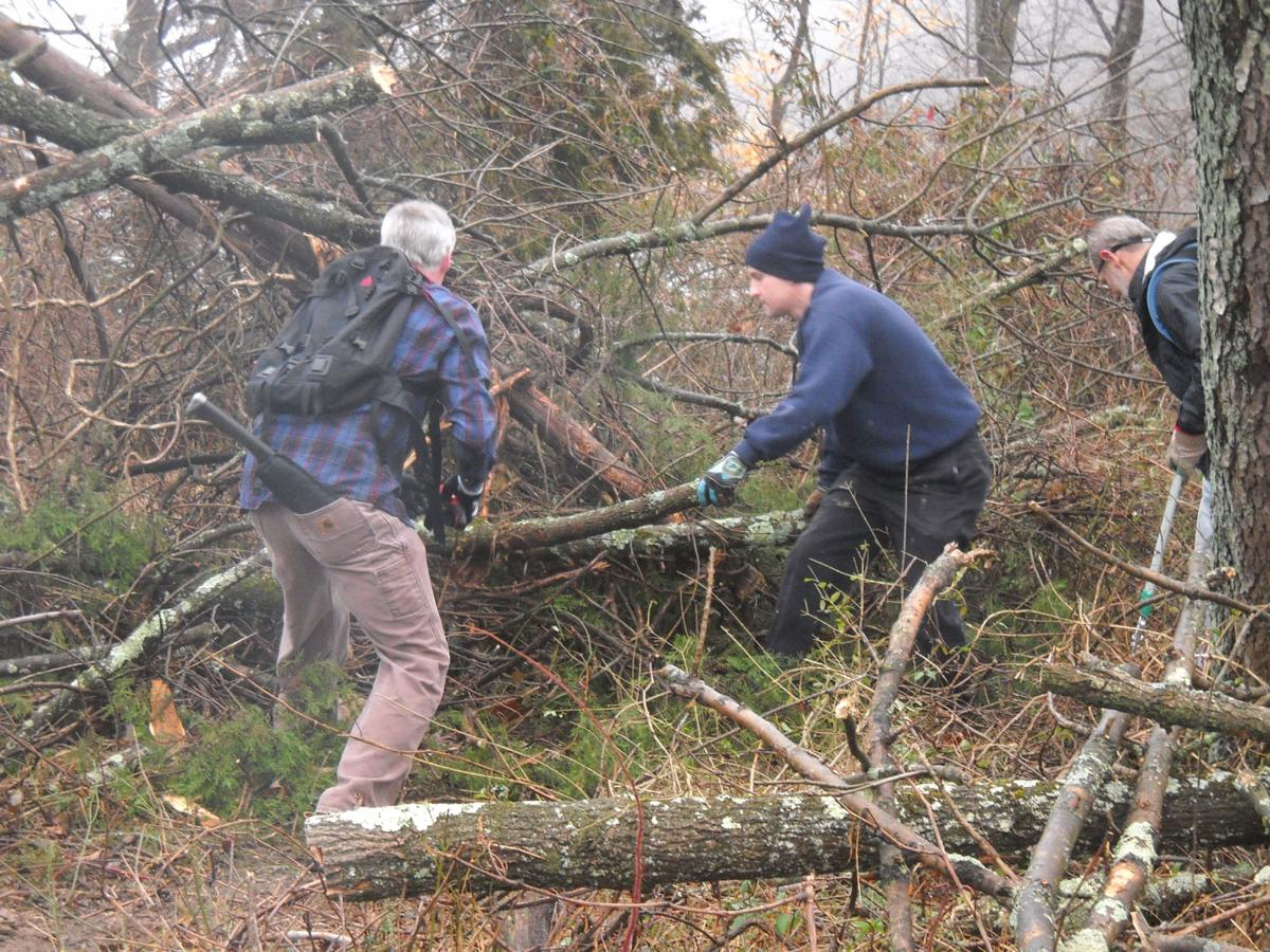 Volunteers clear trails in the Sourlands