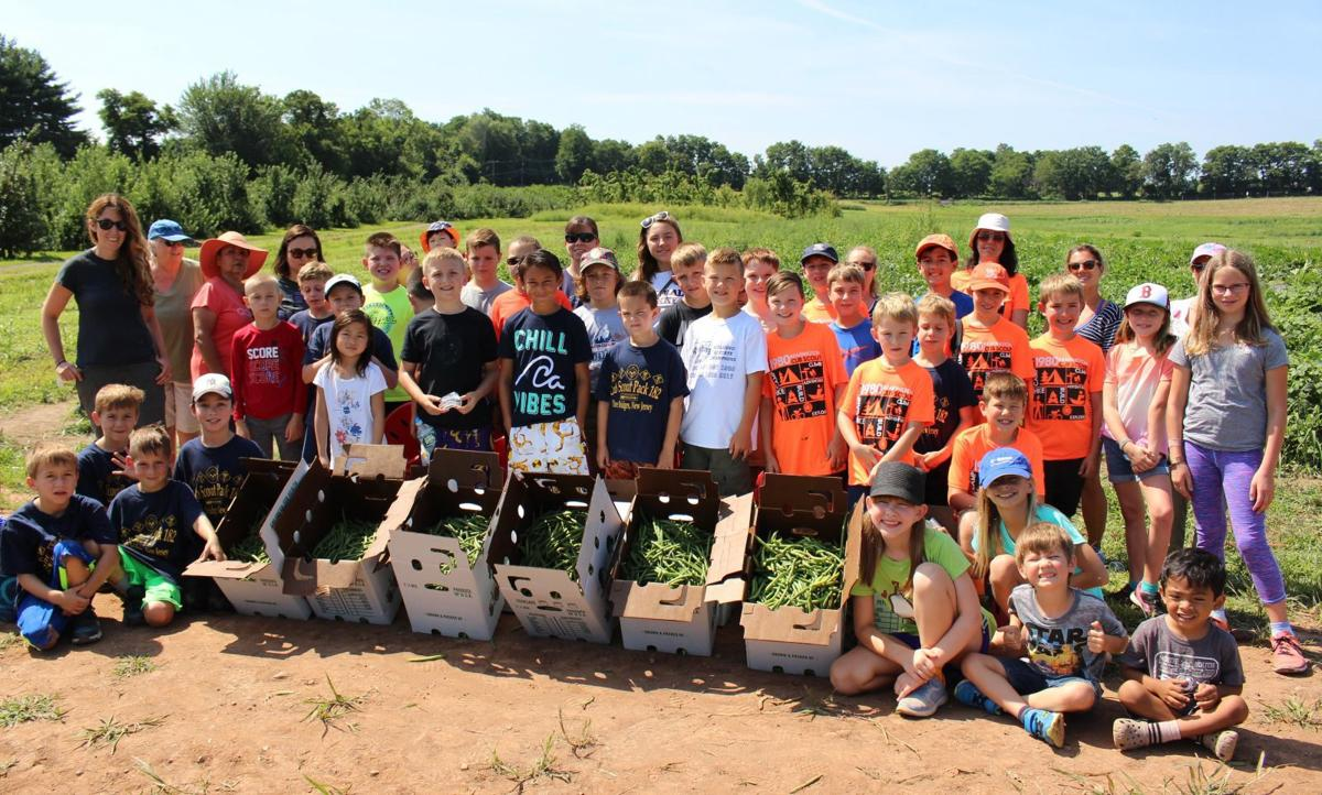 America's Grow-a-Row seeks volunteers for Scout Day on Monday, Aug. 20