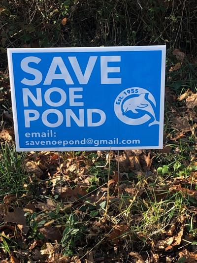SAVE NOE POND