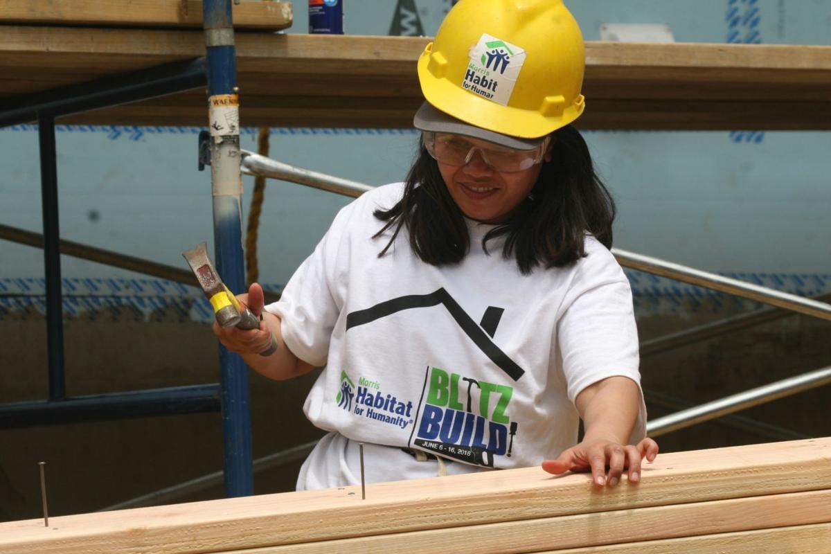 Habitat Volunteer