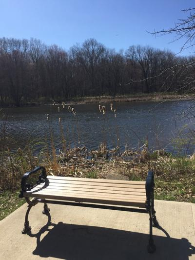 Foote's Pond