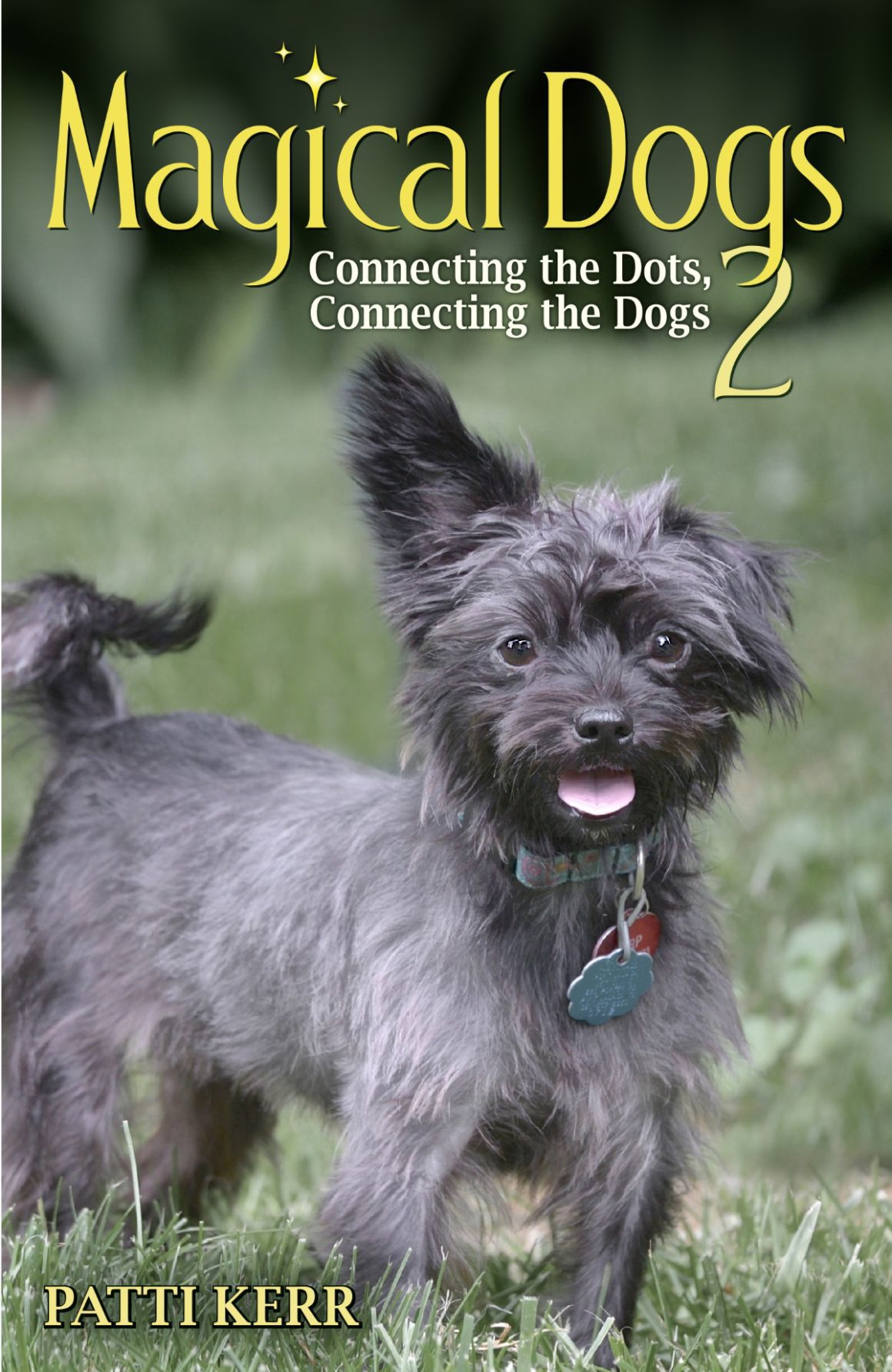 "Local author's 'Magical Dogs 2"" book will aid animal rescue"