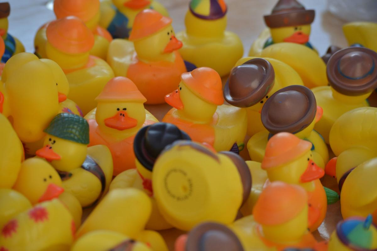 Rubber Ducky Day again brings the crowds to Clinton's falls