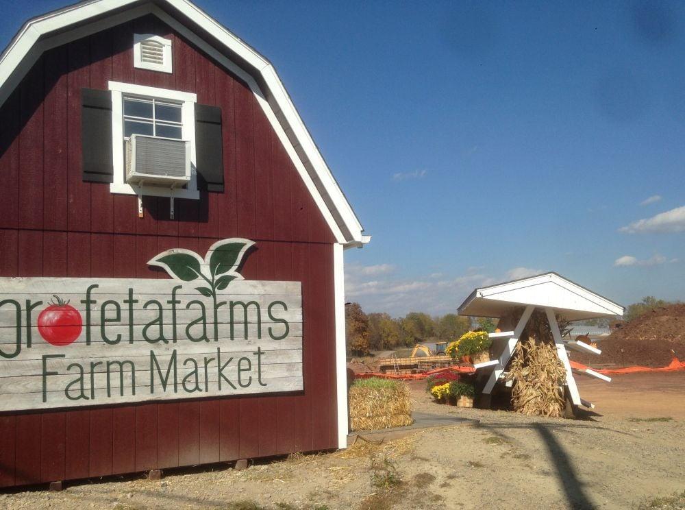 Readington's Profeta Farms grows organic produce, free range poultry, cattle, more