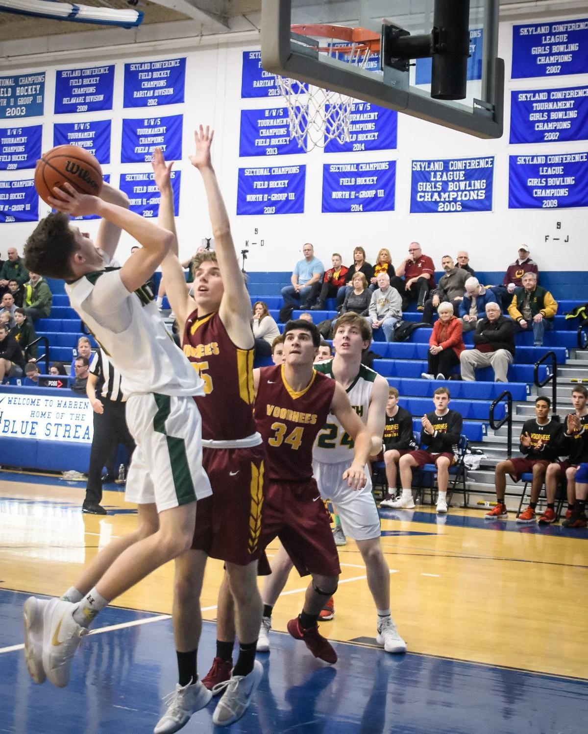 Lions topple Vikings in tri-county basketball tournament
