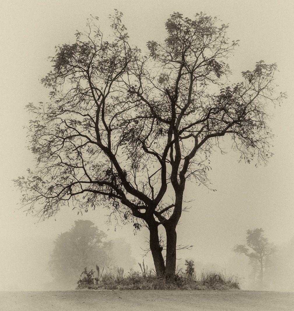 'Ghost Lake' by Jack Moskowitz