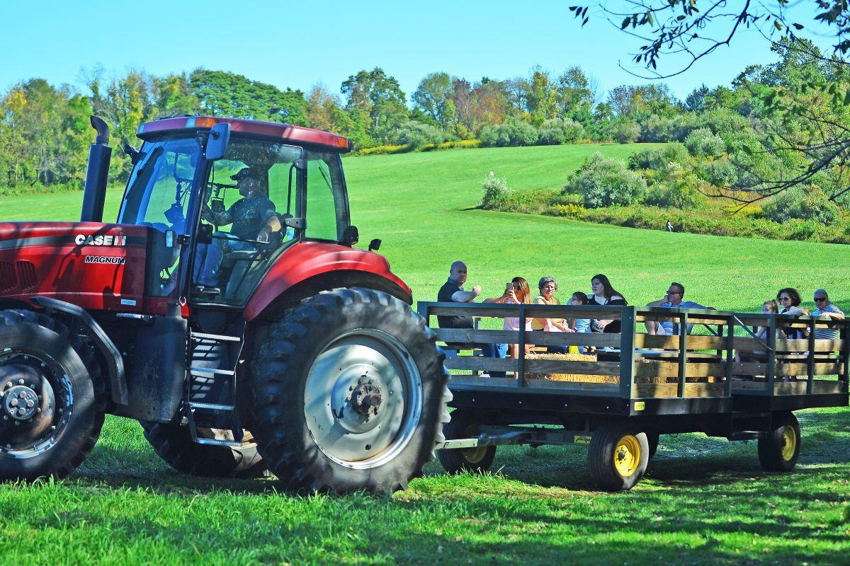 Hundreds spend sunny fall afternoon at Tewksbury's 19th annual Harvest Festival
