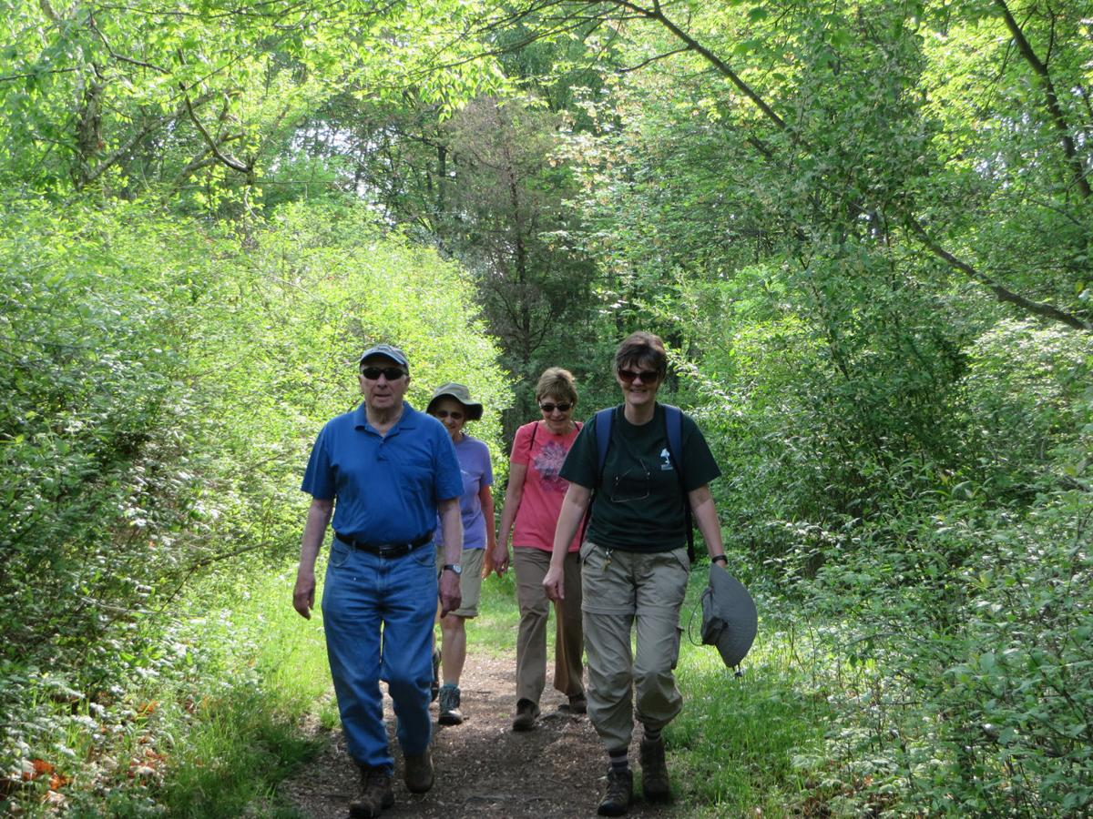 Forest Fitness Walks at the EEC