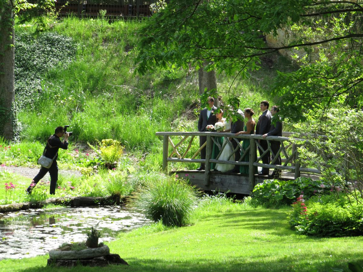 Wedding ceremonies and photos in Somerset County Parks