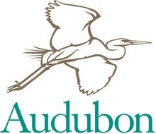 Bird workshop series offered in Bernardsville