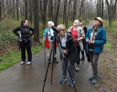 Birding series concludes Saturday in Long Hill